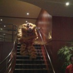 Chinese Lion Dances 2013- An Article by The Chief Instructor, Mr Russell Suthern
